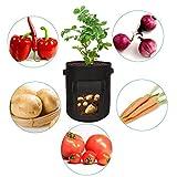 Zoom IMG-1 suptempo 3x sacchi per piante