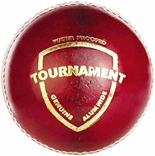 Cricket Leather Ball Online Shopping