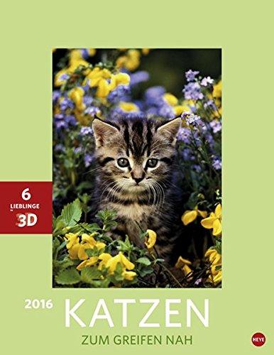 Katzen 3D Posterkalender 2016