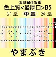 北越紀州色上質B5縦目<最厚口>[やまぶき](200枚)