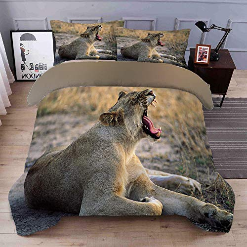 YLWMBB Duvet Cover Set Prairie Lion 3D Printed Reversible Duvet Cover Set Wrinkle Free Quilt Cover Cover Bedding with 2 Pillowcases and Zipper Closure 260x220cm