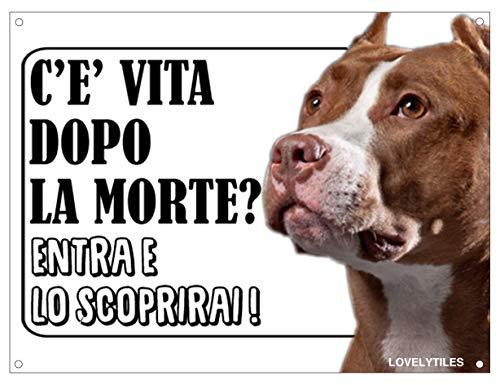 Lovelytiles Pitbull ATTENTI al Cane Esiste LA Vita Dopo LA Morte? Targa Cartello INSEGNA (Metallo)