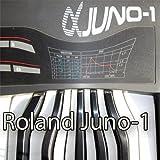 ROLAND Juno-1 Enorme Fábrica Original & Nuevo Creado Sound Library & Editores en CD o descargar