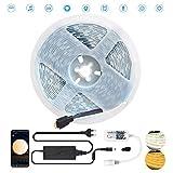 Arote LED Strip 5m 12V LED-Streifenleuchten warmweiß/kaltweiss 2 in 1 Streifen DIY Lichtband Band Lichter,5050SMD dimmbar,mit Bluetooth Fernbedienung LED Controller und Netzteil für Innen Deko Kücke