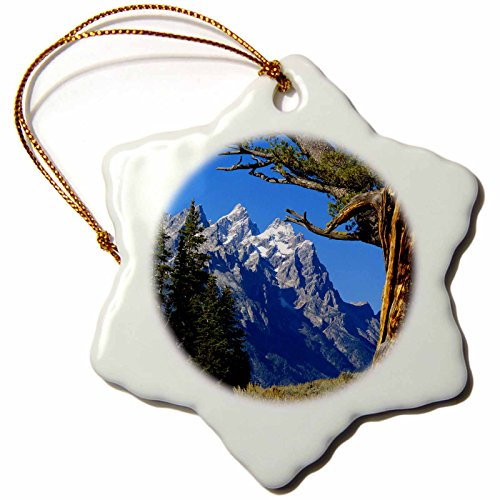3dRose orn_97228_1 Wyoming, Jackson, Grand Teton NP, Cathedral Group US51 BFR0005 Bernard Friel Snowflake Porcelain Ornament, 3-Inch