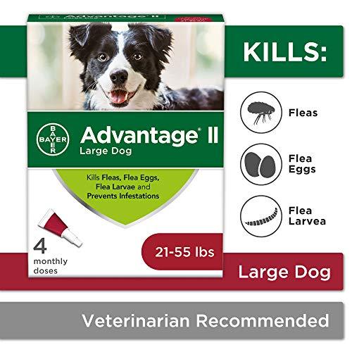Flea and Lice Treatment for Dogs, 21 - 55 lb, 4 doses, Advantage II
