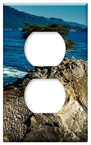 Switch Plate Outlet Cover - Lone Isolated Cypress Tree Sea Ocean Rock Rocky