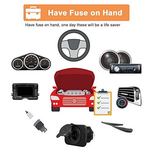 Car Automotive Rv Standard Fuses - Auto ATO Blade Fuse Assortment Kit (2A 3A 5A 7.5A 10A 15A 20A 25A 30A 35A)