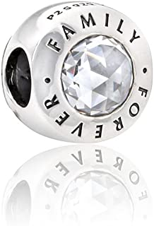 Family Forever Silver Charm 791884CZ