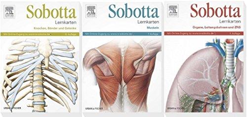 SOBOTTA, LERNKARTEN-PAKET, Muskeln - Knochen, Bänder und Gelenke - Organe, ZNS und Leitungsbahnen