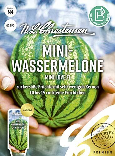 Mini- Wassermelone Mini love F1,zuckersüße Früchte mit sehr wenigen Kernen Samen, apog-01690