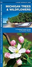 Michigan Trees & Wildflowers: A Folding Pocket Guide to Familiar Species (Pocket Naturalist Guide Series) 1st edition by Kavanagh, James (2004) Pamphlet
