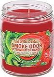 Smoke Odor Exterminator 13oz Jar Candle, Kiwi Twisted Strawberry