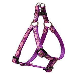 LupinePet Originals 1/2″ Rose Garden 12-18″ Step In Harness for Small Dogs