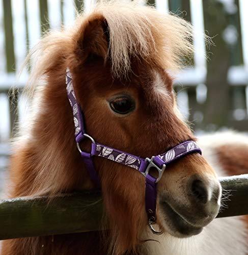 Tysons Breeches Halfter Blümi Minishetty Fohlen Falabella Mini Pony Shetty Minipony Hellblau Rosa Lila Gr. MMS MS S P (MS, Lia)