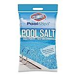 Clorox Pool&Spa Salt High Purity Fast Dissolving Saltwater Chlorinator, 40 lb (18.1 kg)