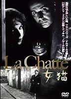 女猫 [DVD]
