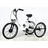 electric adult tricycle - Electric Trike Electric Bike Adult Tricycle 3 Wheel Electric Bicycle for Adults with Removable 36V 10Ah Lithium Battery, Adult Tricycles for Women with Adjustable Seat and Basket, Sightseeing Bike