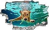 3D-Effekt Wandtattoo Aufkleber Durchbruch selbstklebendes Wandbild Wandsticker Wanddurchbruch Wandaufkleber Hund Pool Unterwasser Wanddeko fürs Kinderzimmer 60x90cm
