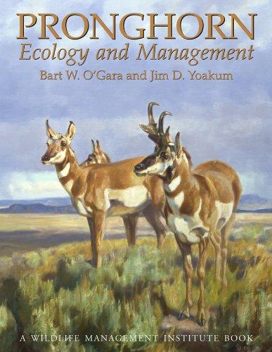 Pronghorn: Ecology & Mangemt: Ecology and Management