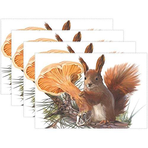 Tischsets Niedlichen Tier Eichhörnchen Muster Teller Matten Waschbar Stoff Hitzebeständige Tisch Tischsets Für Küche Esszimmer Set Von 6 [45X30 Cm]