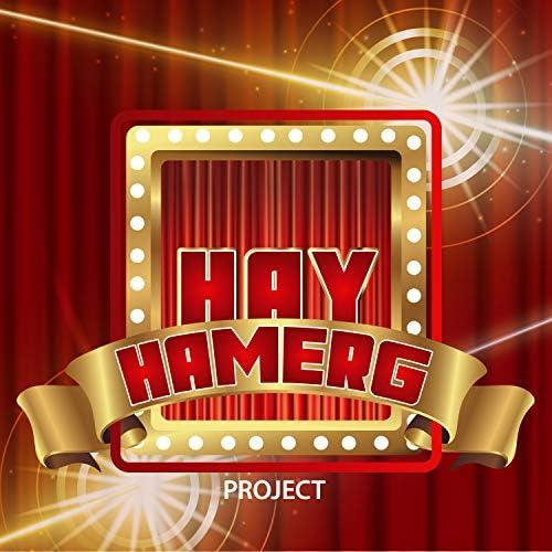 Hay Hamerg Project