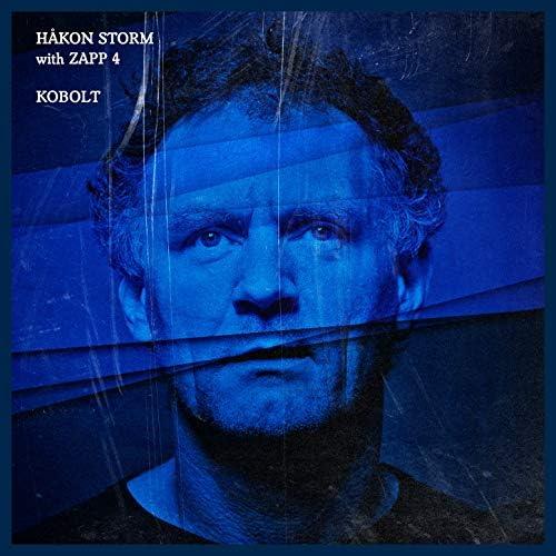 Håkon Storm feat. Zapp 4