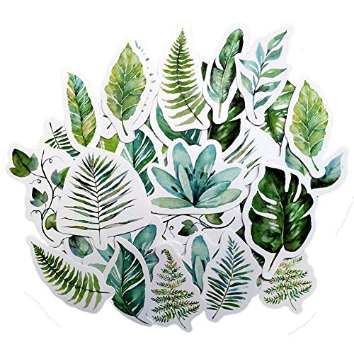 Beyong [45PCS] Beautiful Flowers Stickers, Watercolor Potted Plant and Floral Decals, for Phone, Pad, Laptop, Water Bottle, Planner, Diary, Journal, Scrapbook (Green)