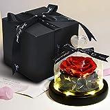 Hela Handgemacht Ewige Rose mit LED-Lichtern und Geschenkbox 5,1 Zoll (Rot)
