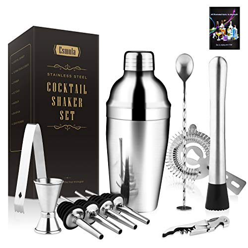 Cocktail Shaker Set 11-teilig, Esmula 550ML Edelstahl Barkeeper Kit Professionelles Martini Mixing Bartending Kit Kombination, Home Stylish Bar Tool Set mit Cocktail Rezeptheft