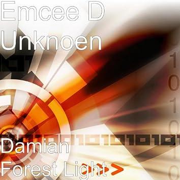 Damian Forest Light