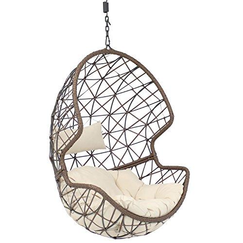 Sunnydaze Danielle Hanging Egg Chair Swing, Resin...