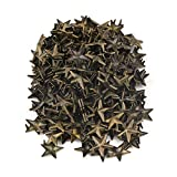 RDEXP Metal Bronzy Star Studs Rivets Punk Spikes Spots for Leathercraft DIY Pack of 200