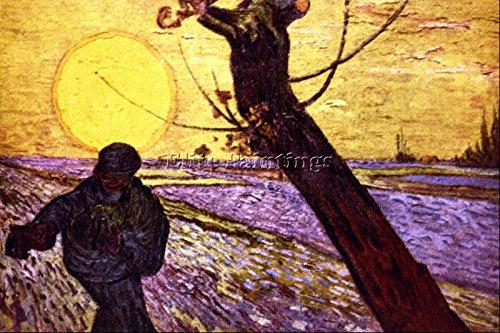 Elite-Paintings Le SEMEUR BY Van Gogh Artista Quadro Riproduzione Dipinto Olio su Tela A Mano 40x60cm Alta qualita