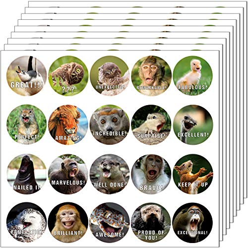 Animal Reward Stickers Hilarious Motivational Positive Teacher Stickers for Kids, 28 Vibrant Designs Fun Animal Meme Stickers Come in Envelope for All Ages Students Grading (560)