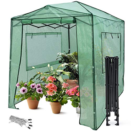 Giantex 8'x6' Portable Greenhouse, Steel Pop up Greenhouse Tent Frame, Quick Setup Greenhouse Canopy, Zipped Front Door, 2 Rolled-Up Windows, Indoor & Outdoor Walk-in Greenhouse (Green)