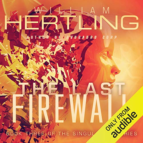 The Last Firewall cover art
