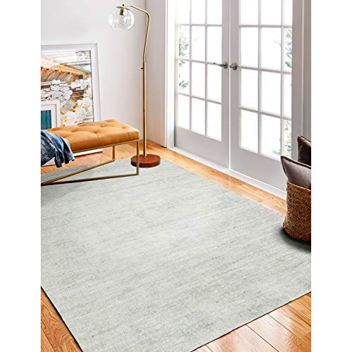 Bashian Rugs Naples Transitional Hand Loomed Area Rug 2' x 3' 2' x 3' Accent, Indoor