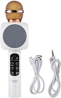 Wireless Microphone HiFi Karoke Speaker - Black