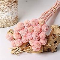 造花 1/5 / 10ピースドライフラワーホーム装飾保存植物ボール天然ブーケ永遠の金オーブの花 (Color : Mid pink, Size : 8 pcs 40 45cm)