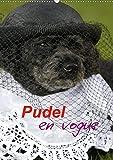 Pudel en vogue (Wandkalender 2020 DIN A2 hoch): Zwei süße Pudel als Models (Monatskalender, 14 Seiten )