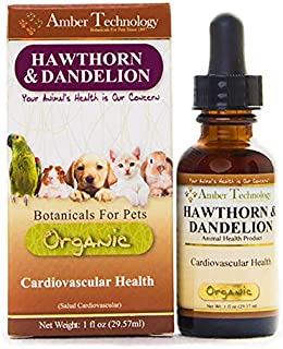 Amber Technology Hawthorn and Dandelion Heart Care, 1oz
