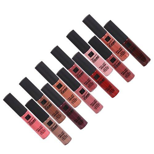 PanDaDa Matte Lippenstift Set 12 Stücke Wasserdichte Langlebige Lipgloss Kosmetik Make-Up...