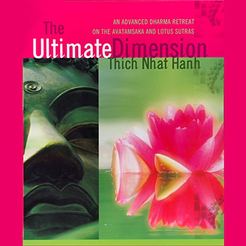 The Ultimate Dimension cover art
