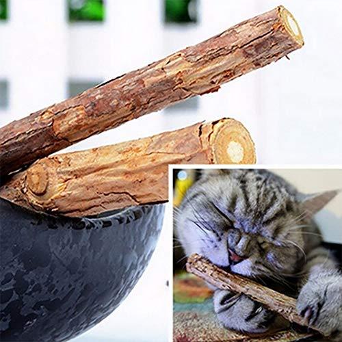 Tongxu 15 Palito de Matatabi Natural, Palo de Hierba gatera, Palo de Masticar,4.72 Pulgadas Juguete Molar de Diente, para Limpiar Dientes de Gatito, para Gato