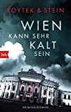 Wien kann sehr kalt sein: Kriminalroman - Georg Koytek