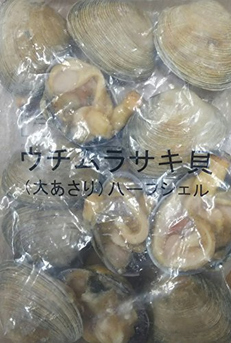 片貝 大あさり ( ウチムラサキ貝 )  1kg×20袋 ( 袋11-15個 )  業務用 ハーフシェル 冷凍