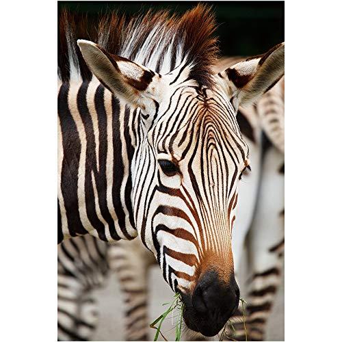 SANSHUI Puzzle di Legno 500-6000 Pezzi Africano Serie Zebra Creativa Regalo di Compleanno for Bambini Giocattoli Educativi 0323 (Size : 5000 Pieces)