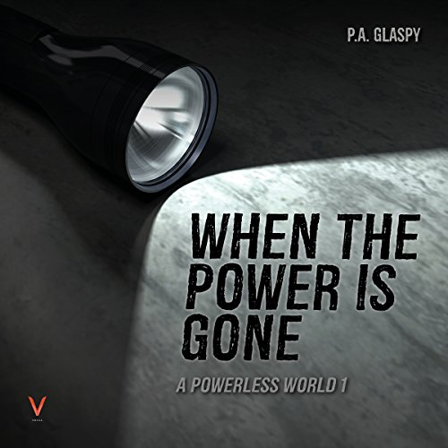 When the Power Is Gone audiobook cover art