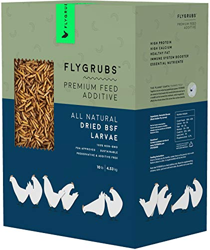 FLYGRUBS Superior to Dried Mealworms for Chickens (10 lb) - 85X More Calcium Than Meal Worms - Non-GMO Chicken Feed Additive & Molting Supplement - BSFL Treats for Hens, Ducks, Wild Birds